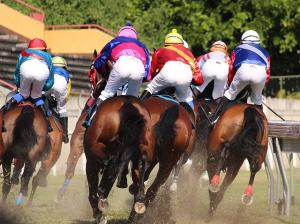 Bioveta was a partner of the Grand Pardubice Steeplechase 2020